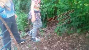 Жильцы дома в Брянске огородили свой двор колючей проволокой