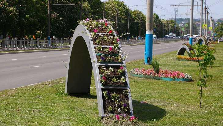 Брянск станет городом цветов