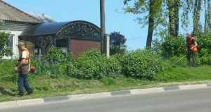 В Брянске начали покос травы