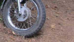 Под Унечей мотоциклист врезался в животное и получил травмы