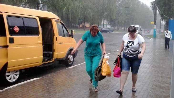 В Брянске лишь 5 из 30 маршрутчиков раскрыли тайны своих рейсов