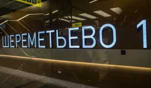Брянский пенсионер «заминировал» аэропорт Шереметьево из-за жены