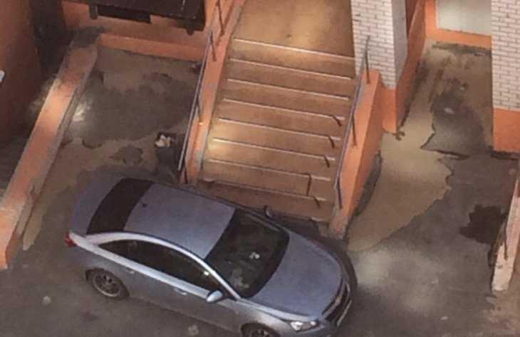 В Брянске легковушка перекрыла жильцам дома вход в подъезд