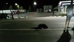 На трассе между Брянском и Добрунью ночью погиб пешеход