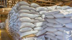 На Лопандинском заводе под мешками сахара погибла 48-летняя женщина