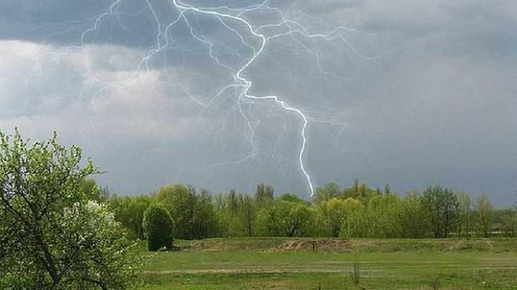 На Брянскую область 23 мая обрушатся грозы и сильный ветер