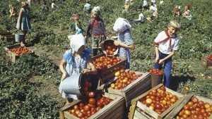 Молдавия должна России 300 миллиардов долларов
