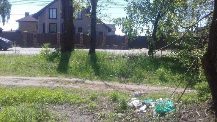 В Брянске против владельцев особняков начали мусорную войну