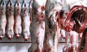 Брянское предприятие будет поставлять мясо в Венесуэлу