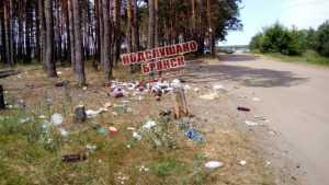 В Брянске берег живописного озера Орлик превратили в свалку