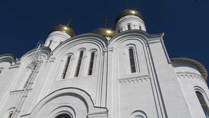 В Брянске возле Кафедрального собора установят светофор