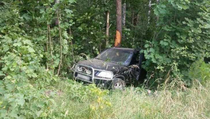 Под Мглином Honda врезалась в дерево – погиб 20-летний водитель