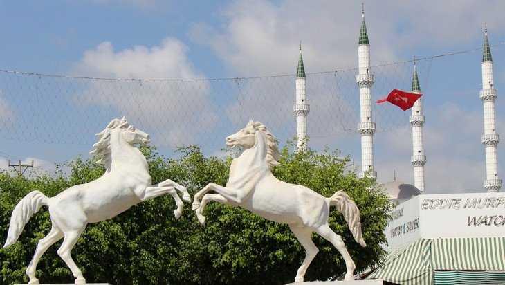Отменили авиарейсы из Брянска в Турцию