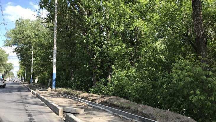 В Брянске на улице Калинина построили тротуар не для пьяных