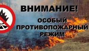 МЧС предупредило брянцев о чрезвычайной пожароопасности