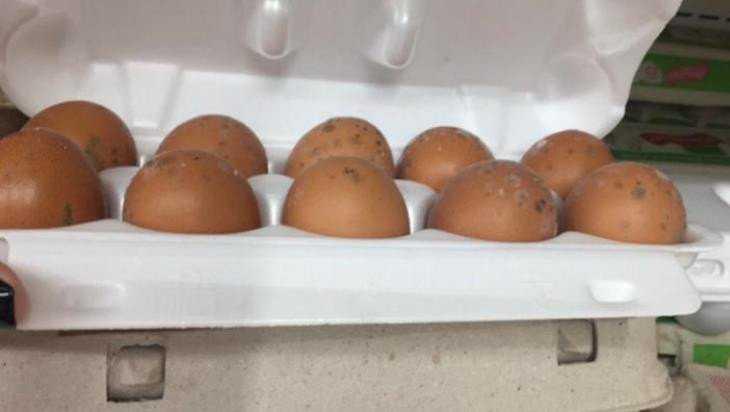 Жительница Новозыбкова купила в магазине яйца с плесенью