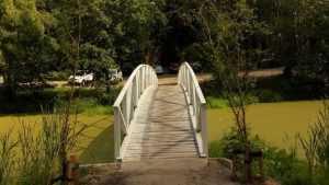 Брянские строители мостов пристыдили требовательных бездельников