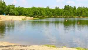 В Брянске открыли семь официальных пляжей для купания