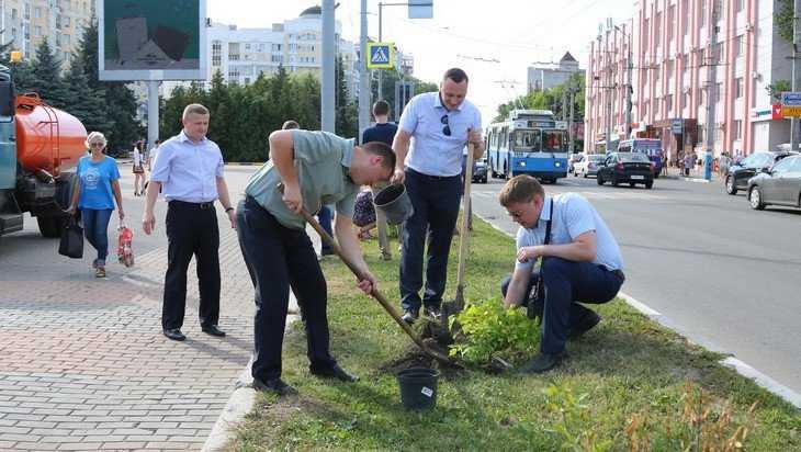 Брянские прокуроры высадили 50 кустарников на площади Партизан