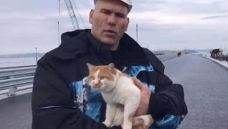 Брянский депутат Валуев отказался принять еще четырех котят