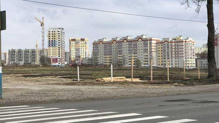 Брянские власти заверили, что Дворец единоборств построят вовремя