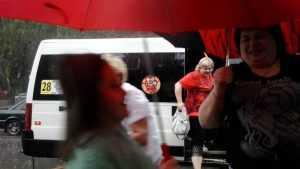Установку онлайн-касс в брянских маршрутках отложили на год
