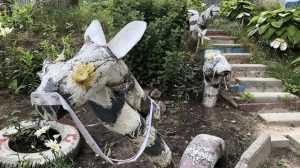 В Брянске изрядно обветшали примерные ослы
