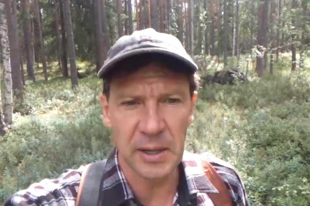 Самый впечатлительный брянец рассказал об удивительной находке в лесу