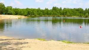 В Брянске запретили купаться в заражённом Мутном озере