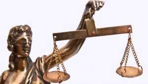 В Брянске суд не стал строго наказывать 17-летнюю лжетеррористку