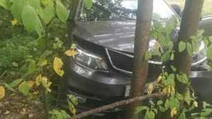 Водительница-пенсионерка возле Круглого озера наехала на дерево
