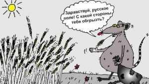 Сельская чиновница из Суражского района украла из казны почти 70 тысяч рублей
