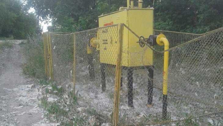 В Брянске рядом с газораспределительным шкафом подожгли тополиный пух