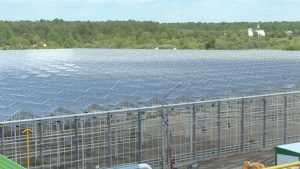 В Брянском районе построили гигантскую теплицу за 2 миллиарда рублей