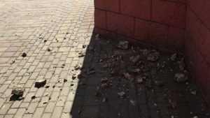 Ремонт дома на улице Фокина в Брянске приняли за разрушение здания