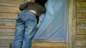 Брянец о краже на своей даче узнал от полицейских