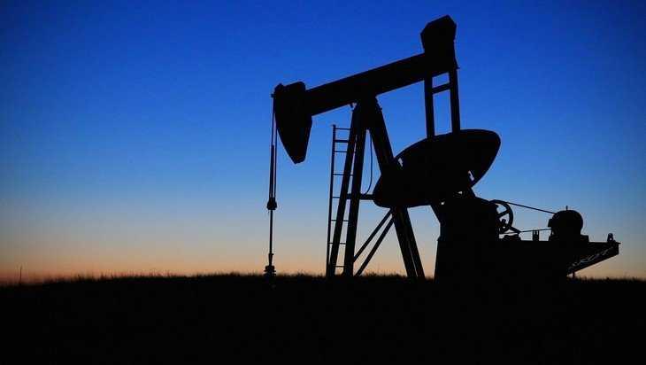 Брянский технический университет обучит нефтяников Королевства Бахрейн
