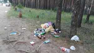В Брянске «свиньи» замусорили берег озера Орлик