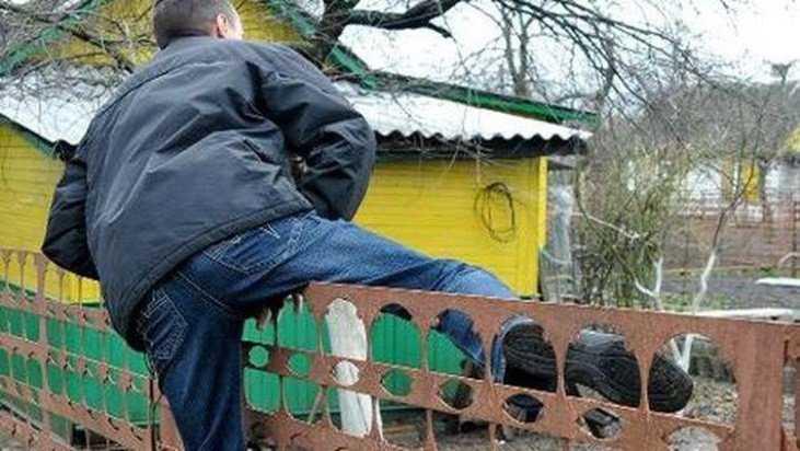 В Брянске сотрудники УМВД задержали с поличным дачного вора