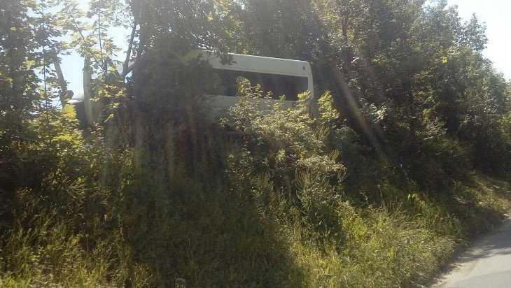 Брянская маршрутка №36 закончила рейс в придорожных кустах