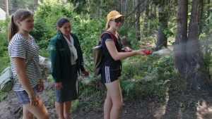 Брянские школьники научились измерять деревья и подписывать столбы