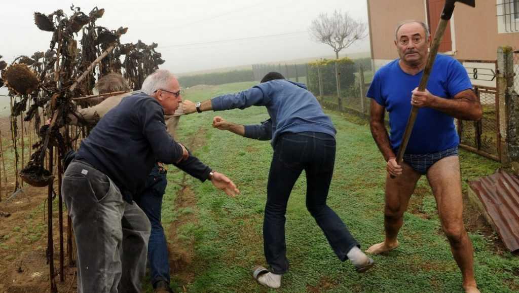 Дачникам пригрозили за нескошенную траву судом и изъятием земли