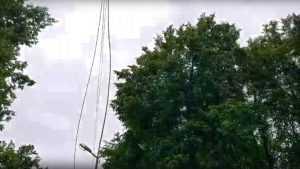 В Белых Берегах дети приспособили под «тарзанку» оборвавшийся провод ЛЭП