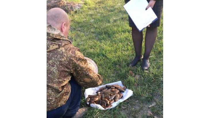 В Карачевском районе поймали троих браконьеров из Орловской области