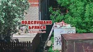 Жители Брянска поддержали загоравшую на крыше гаража девушку