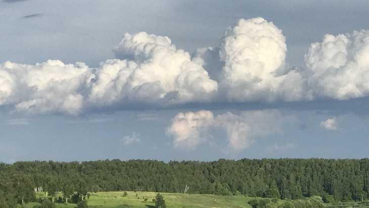 Брянской области 21 июня пообещали 32-градусный зной