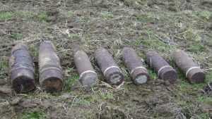 Под Навлей в лесу обезвредили артиллерийский снаряд