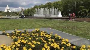 В Брянскую область 27 июля вернется 30-градусная жара