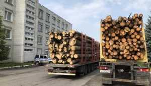 Площадка возле отдела брянской полиции превратилась в лесной склад