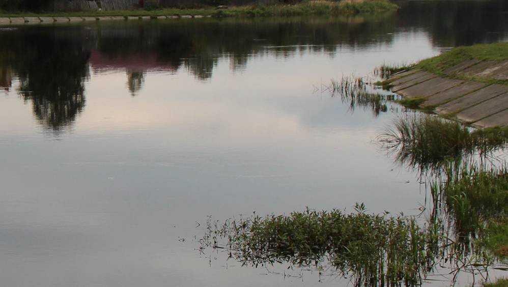 В Новозыбкове на глазах у пьяных приятелей утонул 30-летний мужчина